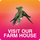 Visit Our Farm House